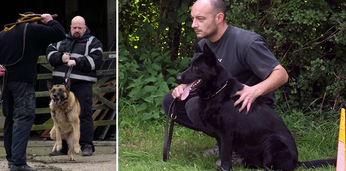 1-2-1 Security Dog Handler Training